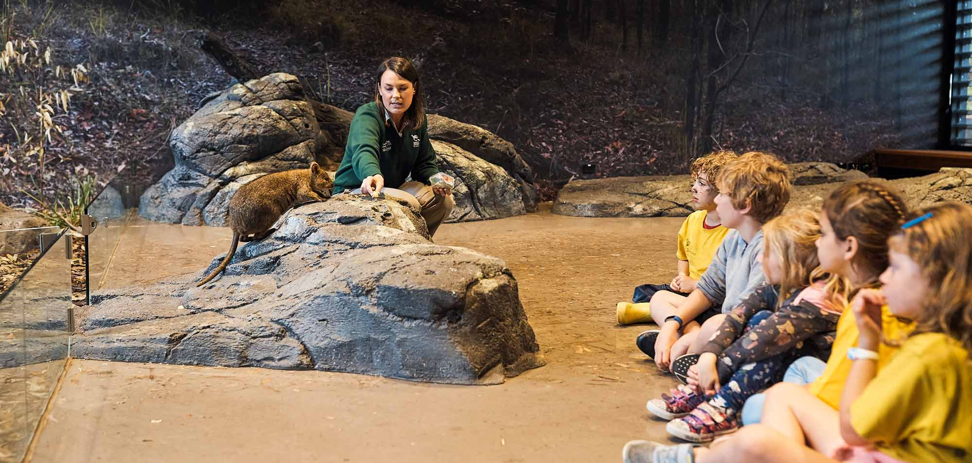 Students experience the Woodlands immersive habitat classroom