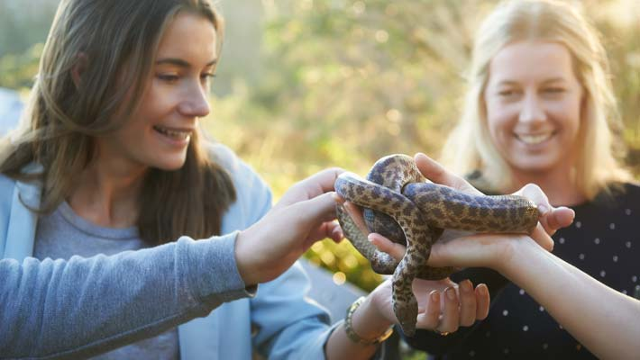 Get up close to some of our friendliest creatures