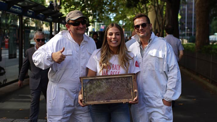 Taronga has teamed up with Burt's Bees on its 'Bring Back the Bees' campaign.