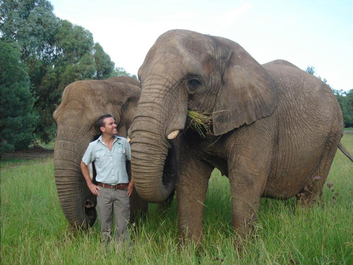 Simon with elephants