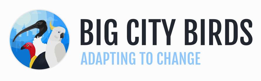 Big City Birds | Taronga Conservation Society Australia